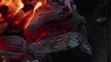 carvão fogo chamas e cinzas video