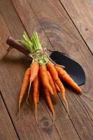 zanahorias frescas frescas sobre tabla de cortar de madera y fondo de madera foto