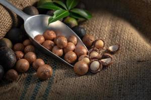 Nueces de macadamia en cilicio en luz oscura foto