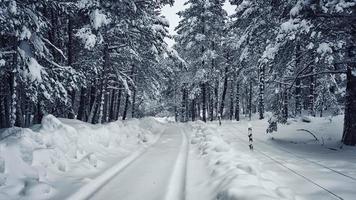 paisaje de invierno en los alpes franceses foto