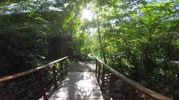 pov van een brug en een zwembad in een tropisch resorthotel. video