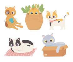 Mascota gatos bola de lana caja de cartón cojín cesta mascota dibujos animados vector