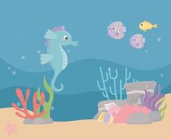 seahorse fishes sand stones bubbles life coral reef cartoon under the sea vector