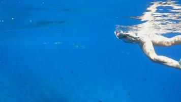 A woman underwater diving snorkeling in Bora Bora tropical island. video