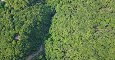 Luchtfoto drone uitzicht op de groene heuvels boven het Lago Maggiore, Zwitserland. video