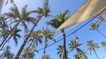 Shade sails and palm trees provide shade in Maui, Hawaii. video