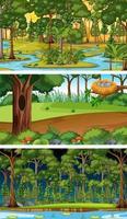 Conjunto de diferentes escenas horizontales del bosque en diferentes momentos. vector