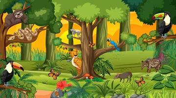 Forest at sunset time landscape scene with different wild animals vector