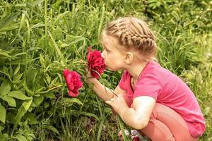 A little girl sits by a flower bed in the garden and sniffs bright pink peonies photo