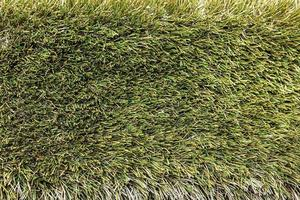 Background from green spring grass. Texture. Backdrop photo