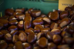 castañas marrones en una caja para la venta foto