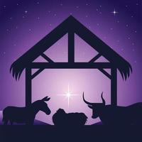 Natividad, pesebre niño Jesús y animales celebración tradicional religiosa, fondo estrella resplandeciente vector