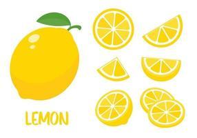 Sour yellow lemons. High vitamin C lemons are cut into slices for summer lemonade. vector