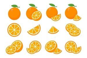 Sweet oranges are cut in half for drinking orange juice during the summer. vector