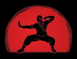 silueta de acción de lucha de kung fu vector