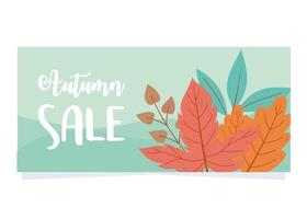 autumn sale, advert commercial shopping sale or promo poster vector