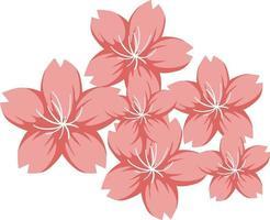 Cherry blossom or Sakura in cartoon style isolated vector