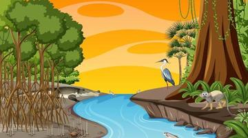 Nature scene with Mangrove forest at sunset time in cartoon style vector