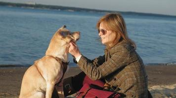 une jeune femme sur la plage au bord de la rivière nourrit un libérateur de chien brun printemps ou été froid video