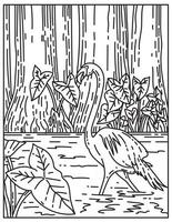 A Flamingo Wading in Subtropical Wilderness of Everglades National Park Florida United States Mono Line or Monoline Black and White Line Art vector