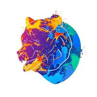 Abstract bear from a splash of watercolors. Vector illustration of paints.
