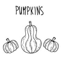 Happy Halloween doodle drawing of three cute pumpkins with inscription vector