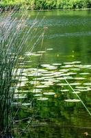 el lago ventina foto