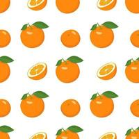 Seamless bright spring and summer pattern with oranges and slices on a white background. A set of citrus fruits for a healthy lifestyle vector