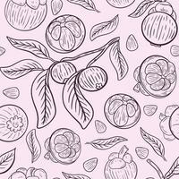 Mangosteen seamless pattern vector