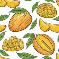 Seamless pattern with mango vector