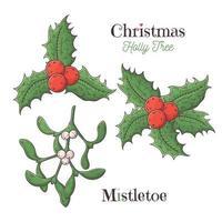 Christmas holly and mistletoe white Vector. vector