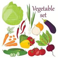 Vector set of vegetables drawn in cartoon style. A collection of farm products for the restaurant menu, a label on the market.