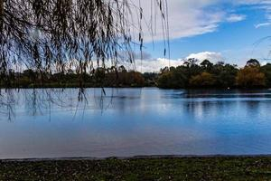 Views while strolling around Western Springs Duck Pond, Auckland, New Zealand photo