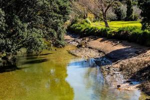 Views while walking around the Whangarahi Reserve, Whangarahi, New Zealand photo