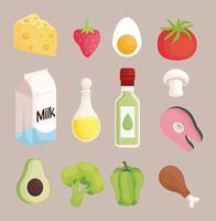 thirteen healthy food vector