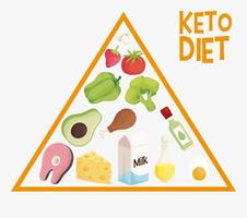 keto diet pyramid vector