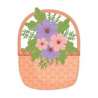 cute purple and pink floral spring decoration in basket vector