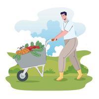 Hombre agricultor con verduras en carretilla en el campo vector