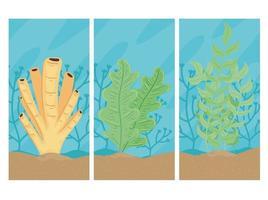 Tres mundos submarinos con escenas de paisajes marinos de algas. vector
