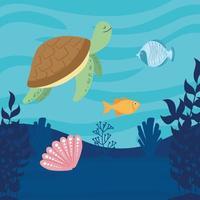 mundo submarino con escena de paisaje marino de tortugas y peces vector