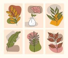bundle of six boho style leafs plants icons vector