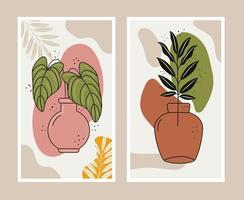 boho style two leafs plants in ceramic vases scenes vector