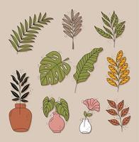 bundle of ten boho style leafs plants decorative nature icons vector