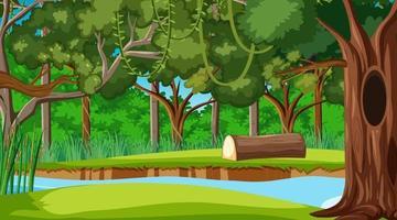 Rainforest or tropical forest daytime scene vector