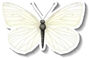 A sticker template with white butterfly isolated vector