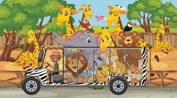 Safari scene with wild animals in a cage car vector