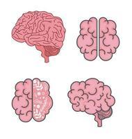brain icon set vector design