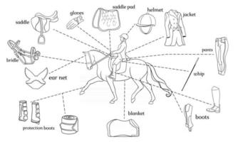 Equestrian sport infographics horse harness and rider equipment in the center of a rider on a horse vector