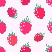Rasberry seamless pattern vector