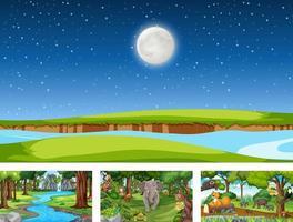 Diferentes escenas de la naturaleza del bosque y la selva tropical con animales salvajes. vector